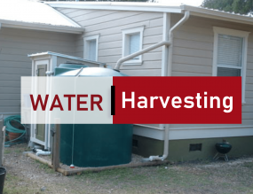 Steps To Harvesting And Drinking Rainwater